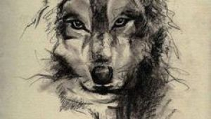 Drawings Of A Wolf Tattoo 73 Amazing Wolf Tattoo Designs Ink Wolf Tattoos Tattoos Wolf