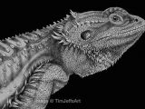 Drawings Of Bearded Dragons Bearded Dragon Ink Drawing Awesome Artwork Drawings Ink Animal