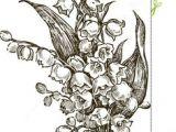Drawings Of Birth Flowers 17 Best July Birth Flowers Images Beautiful Flowers Lotus Lotus