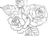 Drawings Of Bunch Of Roses 31 Best Flower Bouquet Tattoo Outlines Images Flower Designs