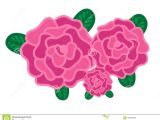 Drawings Of Bunch Of Roses Pink Roses with Leaves Vector Stock Vector Illustration Of Flower