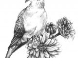Drawings Of Doves and Roses Mourning Dove Tattoo Mourning Dove Tattoo Tattoos Dove Tattoos