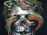 Drawings Of Dragons and Skulls Skulls and Gutaiars Vampire Skull Dragon T Shirt Chinese Dragon
