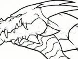 Drawings Of Dragons Faces 316 Best Dragon Head Drawing Images