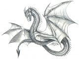 Drawings Of Dragons Realistic Easy Dragon Things to Draw Dragon Dragon Sketch Drawings