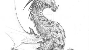 Drawings Of Dragons Realistic Pin by Tambre Kay On Expression Dragon Dragon Sketch Realistic