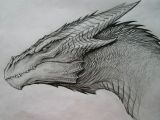 Drawings Of Dragons with Skulls Image Result for Dragon Drawing Art Inspiration Dragon Sketch