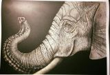 Drawings Of Elephant Eyes Elephant by Janet Lee Daniel Intricate Ink Animals In Detail
