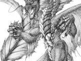 Drawings Of European Dragons 968 Best Dragon Drawings Images Mandalas Coloring Books
