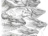Drawings Of Fantasy Dragons Pin by Damon Jeter On Pencil Drawings Dragon Dragon Sketch