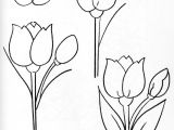 Drawings Of Flower Buds Pin by Jill Smith On Sketch for Watercolour Pinterest Doodles
