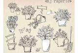 Drawings Of Flower Gardens Hand Drawn Garden Plants Clip Art Flowers Clip Art Pot Plants Clip