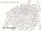 Drawings Of Flowers Hd Bunch Of Flowers Drawing Easy S S Media Cache Ak0 Pinimg originals