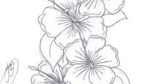 Drawings Of Flowers Hibiscus 11 Best Hibiscus Drawing Images In 2019 Hibiscus Drawing Hibiscus