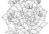 Drawings Of Flowers Pretty 23 Stripes and Flowers Marionperlet