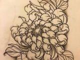 Drawings Of Flowers Tattoos 10 Best Chrysanthemum Drawing Images Botanical Illustration