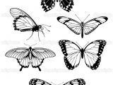 Drawings Of Flowers with butterflies 101 Ideas for Drawings Of Flowers and butterflies