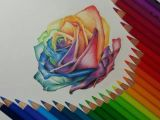 Drawings Of Flowers with Color Rose Color Pencil Drawing by Gaby Sabbagh Rainbows Pencil