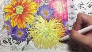 Drawings Of Flowers Youtube Flower Coloring Tutorial 2 Floribunda Coloring Book Colored