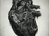 Drawings Of Hands In A Heart Wolf Heart Richey Beckett Illustration My Heart Anatomy