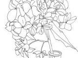 Drawings Of Hydrangea Flowers 81 Best Hydrangeas Images Hydrangeas Drying Hydrangeas Flower