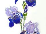 Drawings Of Iris Flowers 245 Best Iris Images In 2019 Painted Flowers Iris Painting Silk