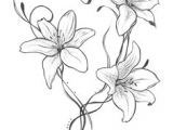 Drawings Of Lilies Flower 21 Best Lillies Tattoo Images Drawings Tattoo Art Adoption Quotes