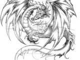 Drawings Of Medieval Dragons 118 Best Dragons Images Dragon Art Drawings Fantasy Dragon