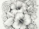 Drawings Of Nice Flowers 61 Best Art Pencil Drawings Of Flowers Images Pencil Drawings