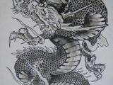 Drawings Of oriental Dragons 245 Best Japanese Dragons Images Japanese Dragon Tattoos Japanese