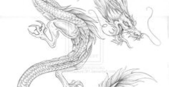 Drawings Of oriental Dragons 997 Best asian Dragons Images In 2019 Japanese Tattoos Japanese