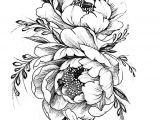 Drawings Of Peonies Flowers Tattoovorlage Zeichnen Pinterest Tattoos Flower Tattoos Und