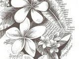 Drawings Of Plumeria Flowers Flowers Drawing Art Tattoos