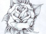 Drawings Of Roses and Banners the top 29 Flower In Japanese Farm Steroid