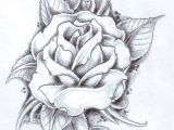 Drawings Of Roses In Black and White Rose with Banner Best Of Drawings Roses S S Media Cache Ak0 Pinimg