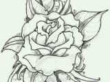 Drawings Of Roses with Color Rose Flower Drawing Embroidery Pinterest Drawings Flowers and Art