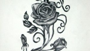 Drawings Of Roses with Vines Vine and Roses by Vaikin On Deviantart Gustos Rose Tattoos