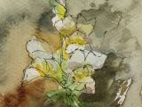 Drawings Of Snapdragons Art Card Watercolour Postcard Flower Painting 6x4in Impression