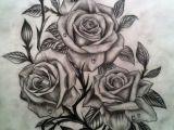 Drawings Of Three Roses 55 Best Rose Tattoos Designs Best Tattoos for Women Ink Love 33