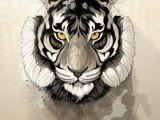 Drawings Of Tiger Eyes Tiger Wild Nature Animal Animals Free Animal Heads Pinterest