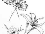 Drawings Of Tiny Flowers Small Flower Tattoo Cute Fine Line Watercolor Unique Different Girly