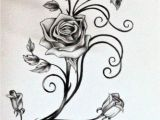 Drawings Of Tribal Flowers Drawings Of Vines and Leaves Roses and the Vine by Rosilutfi