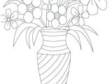 Drawings Of Tropical Flowers Best 28 Tropical Flower Drawing Fabio Bortolani