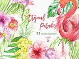 Drawings Of Tropical Flowers Tropical Clip Art Tropical Floral Clipart Flamingo Clipart Summer