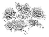 Drawings Of Vine Flowers Image Result for Vine and Thorns Drawings Deck Of Cards Tattoos