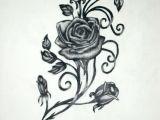 Drawings Of Vine Flowers Roses with Vines Drawing Rose Vine Drawing Black Rose Vine Tattoos