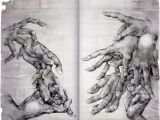 Drawings Of Washing Hands Sketches Of Hands Hand Sketches Of Hands and forms