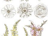 Drawings Of Wildflowers Pin by Aakira On Flower Drawings Tattoos Art