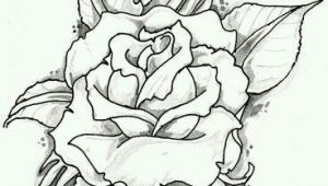 Drawings Of Winter Roses Rose with Banner New Drawings Roses S S Media Cache Ak0 Pinimg