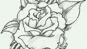 Drawings or Roses Https S Media Cache Ak0 Pinimg Com originals 89 0d 6b